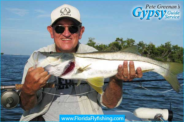 Snook caught on fly rod in Boca Grande, FL with fly fishing guide Pete Greenan